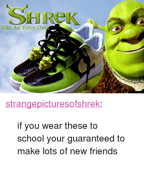 """nike air: SHReK  Nike Air Force Ones <p><a href=""""http://strangepicturesofshrek.tumblr.com/post/68752350686/if-you-wear-these-to-school-your-guaranteed-to"""" class=""""tumblr_blog"""">strangepicturesofshrek</a>:</p>  <blockquote><p>if you wear these to school your guaranteed to make lots of new friends</p></blockquote>"""