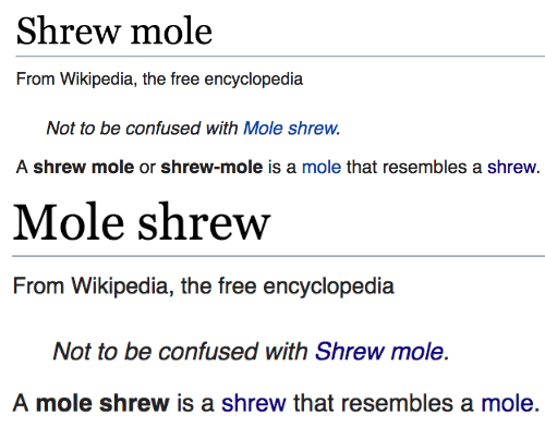 Confused, Wikipedia, and Free: Shrew mole  From Wikipedia, the free encyclopedia  be confused with Mole shrew.  A shrew mole or shrew-mole is a mole that resembles a shrew.   Mole shrew  From Wikipedia, the free encyclopedia  Not to be confused with Shrew mole.  A mole shrew is a shrew that resembles a mole