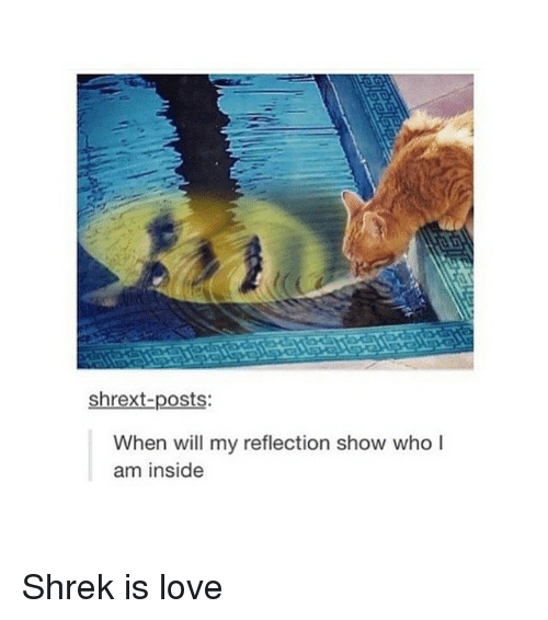 Shrek Is Love: shrext-posts:  When will my reflection show who I  am inside Shrek is love
