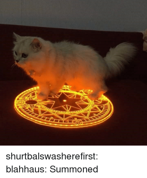 Fake, True, and Tumblr: shurtbalswasherefirst:  blahhaus:  Summoned