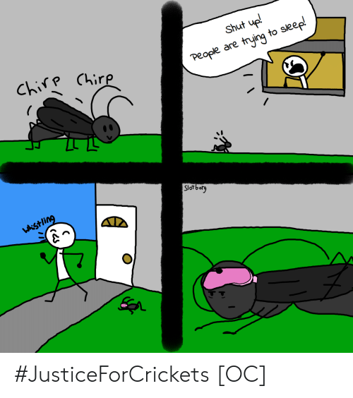 Trying To Sleep: Shut up!  Chirp Chirp  People are trying to sleep!  Slorborg  wkistling #JusticeForCrickets [OC]