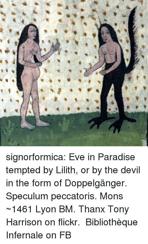 doppelganger: signorformica:   Eve in Paradise tempted by Lilith, or by the devil in the form of Doppelgänger. Speculum peccatoris. Mons ~1461 Lyon BM. Thanx Tony Harrison on flickr.  Bibliothèque Infernale on FB