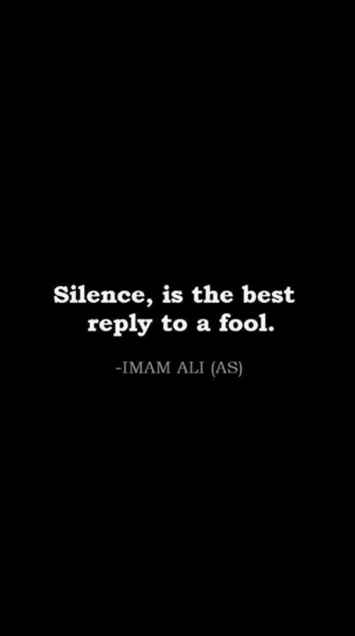 Best Reply: Silence, is the best  reply to a fool  -IMAM ALI (AS)