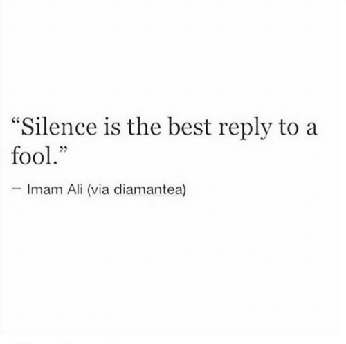 "Best Reply: ""Silence is the best reply to a  fool.""  -Imam Ali (via diamantea)"