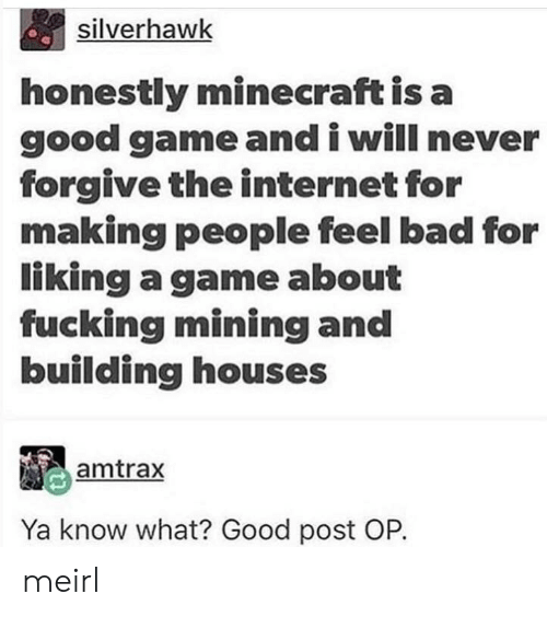 Post Op: silverhawk  honestly minecraft is a  good game and i will never  forgive the internet for  making people feel bad for  liking a game about  fucking mining and  building houses  amtrax  Ya know what? Good post OP. meirl