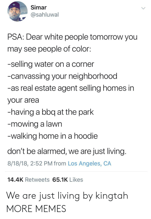 real estate agent: Simar  @sahluwal  PSA: Dear white people tomorrow you  may see people of color:  -selling water on a corner  -canvassing your neighborhood  -as real estate agent selling homes in  your area  -having a bbq at the park  mowing a lawn  walking home in a hoodie  don't be alarmed, we are just living  8/18/18, 2:52 PM from Los Angeles, CA  14.4K Retweets 65.1K Likes We are just living by kingtah MORE MEMES
