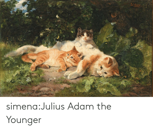 younger: simena:Julius Adam the Younger