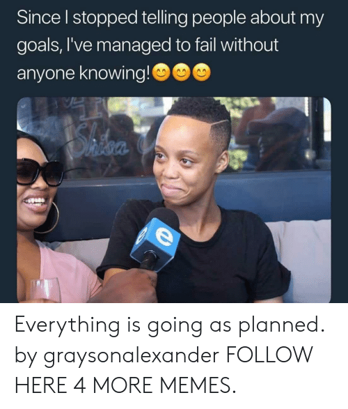 My Goals: Since I stopped telling people about my  goals,I've managed to fail without  anyone knowing!  SAfor  Ohfoa Everything is going as planned. by graysonalexander FOLLOW HERE 4 MORE MEMES.