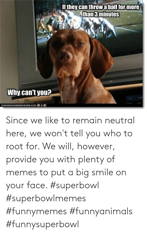 Smile: Since we like to remain neutral here, we won't tell you who to root for. We will, however, provide you with plenty of memes to put a big smile on your face. #superbowl #superbowlmemes #funnymemes #funnyanimals #funnysuperbowl
