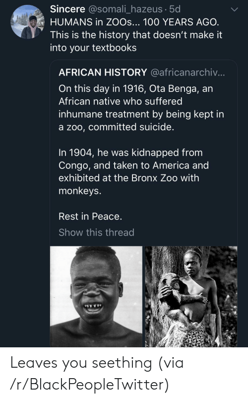 Bronx: Sincere @somali_hazeus 5d  HUMANS in ZOOs... 100 YEARS AGO  This is the history that doesn't make it  into your textbooks  AFRICAN HISTORY @africanarchiv.  On this day in 1916, Ota Benga, an  African native who suffered  inhumane treatment by being kept in  a zoo, committed suicide  In 1904, he was kidnapped from  Congo, and taken to America and  exhibited at the Bronx Zoo with  monkeys  Rest in Peace  Show this thread Leaves you seething (via /r/BlackPeopleTwitter)