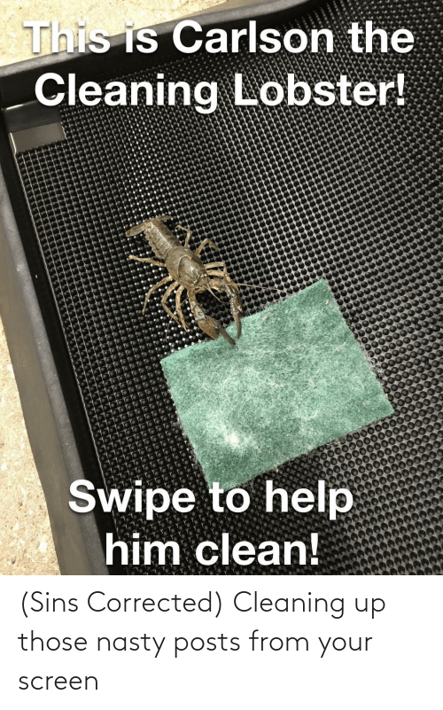 cleaning: (Sins Corrected) Cleaning up those nasty posts from your screen