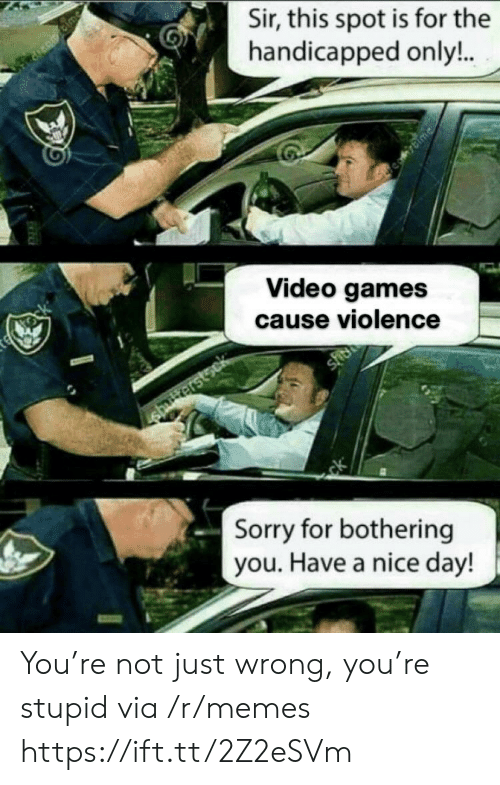 Memes, Sorry, and Video Games: Sir, this spot is for the  handicapped only!..  Bime  te tock  Video games  cause violence  shee  striterstsck  ck  Sorry for bothering  you. Have a nice day! You're not just wrong, you're stupid via /r/memes https://ift.tt/2Z2eSVm