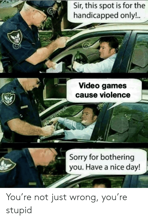 Sorry, Video Games, and Games: Sir, this spot is for the  handicapped only!..  Blme  te tock  Video games  cause violence  sher  shriterstsck  ck  Sorry for bothering  you. Have a nice day! You're not just wrong, you're stupid