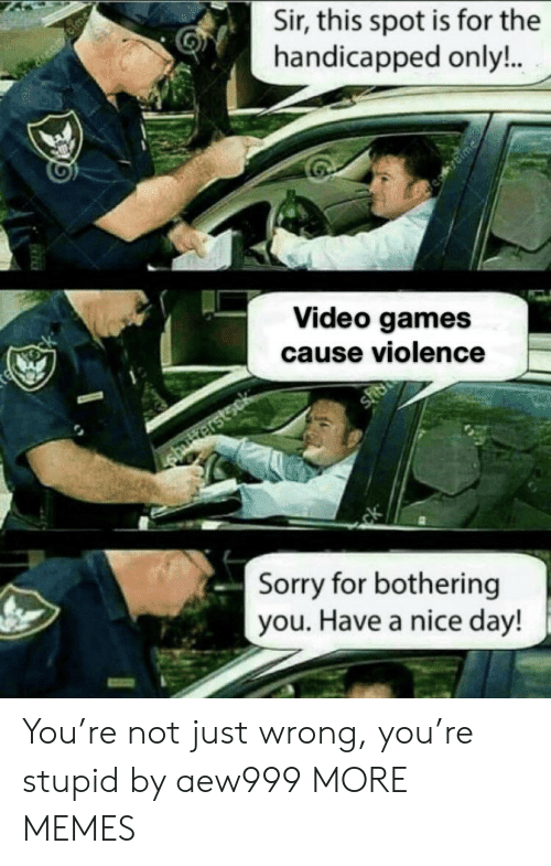 bothering: Sir, this spot is for the  handicapped only!..  Blme  te tock  Video games  cause violence  sher  shriterstsck  ck  Sorry for bothering  you. Have a nice day! You're not just wrong, you're stupid by aew999 MORE MEMES