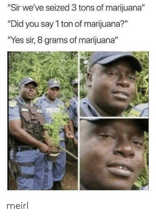"""did-you-say: """"Sir we've seized 3 tons of marijuana""""  """"Did you say 1 ton of marijuana?""""  """"Yes sir, 8 grams of marijuana""""  MOLD POLICS meirl"""