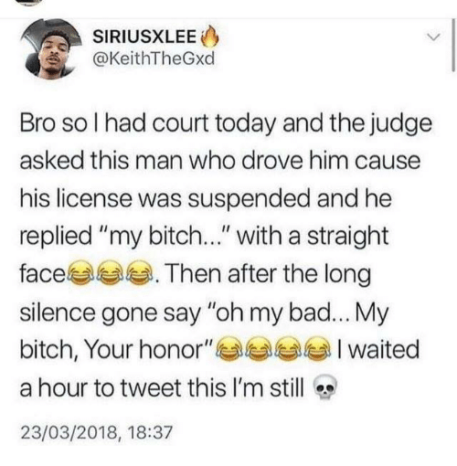 "My Bitch: SIRIUSXLEE  @KeithTheGxd  Bro so I had court today and the judge  asked this man who drove him cause  his license was suspended and he  replied ""my bitch..."" with a straight  face . Then after the long  silence gone say ""oh my bad... My  bitch, Your honor""Iwaited  a hour to tweet this I'm still  23/03/2018, 18:37"