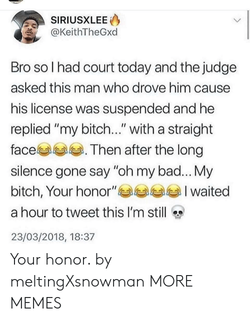 "My Bitch: SIRIUSXLEE  @KeithTheGxd  Bro so l had court today and the judge  asked this man who drove him cause  his license was suspended and he  replied ""my bitch..."" with a straight  face. Then after the long  silence gone say ""oh my bad... My  bitch, Your honor""부부부부 I waited  a hour to tweet this I'm still  23/03/2018, 18:37 Your honor. by meltingXsnowman MORE MEMES"