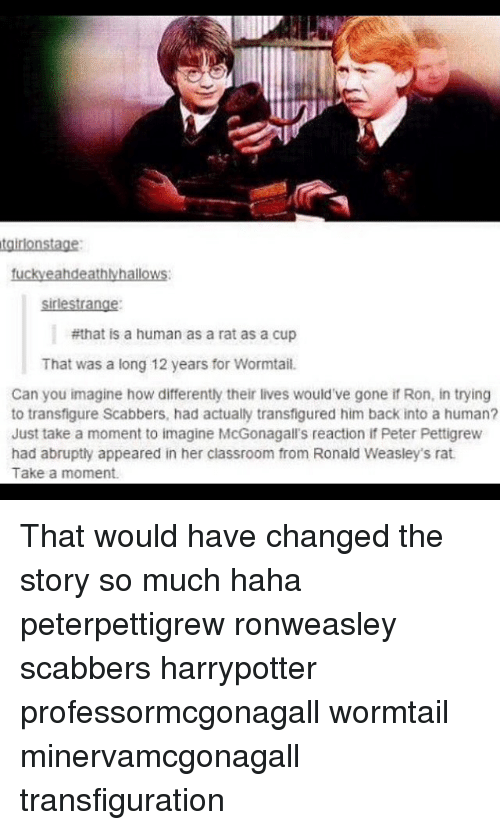 Memes, Classroom, and Back: sirlestrange  #that is a human as a rat as a cup  That was a long 12 years for Wormtail.  Can you imagine how differently their lives would've gone if Ron, in trying  to transfigure Scabbers, had actually transfigured him back into a human?  Just take a moment to imagine McGonagall's reaction if Peter Pettigrew  had abrupty appeared in her classroom from Ronald Weasley's rat  Take a moment. That would have changed the story so much haha peterpettigrew ronweasley scabbers harrypotter professormcgonagall wormtail minervamcgonagall transfiguration