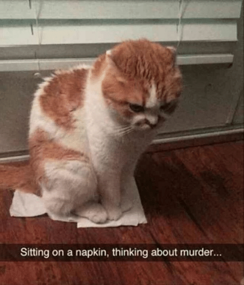 Memes, Murder, and 🤖: Sitting on a napkin, thinking about murder...
