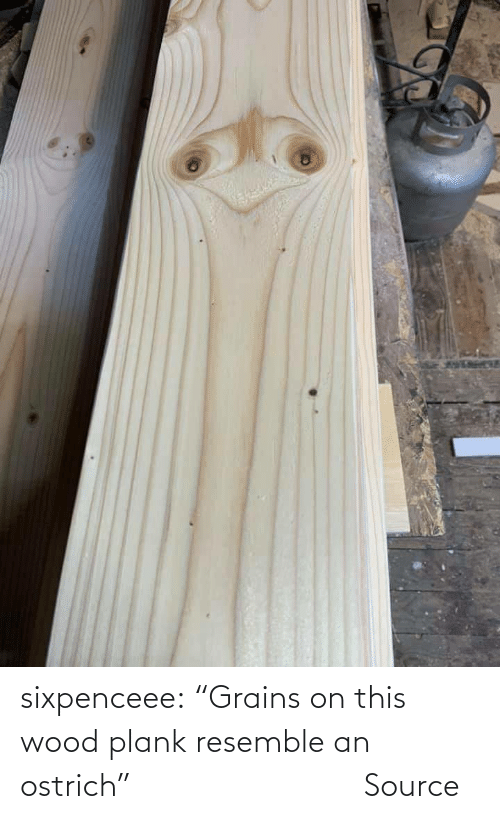 """source: sixpenceee:   """"Grains on this wood plank resemble an ostrich""""                Source"""