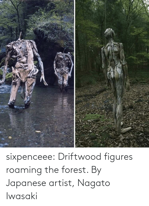 the forest: sixpenceee:  Driftwood figures roaming the forest. By Japanese artist, Nagato Iwasaki