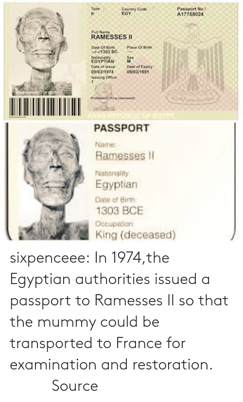 mummy: sixpenceee:  In  1974,the Egyptian authorities issued a passport to Ramesses II so that  the mummy could be transported to France for examination and  restoration.                 Source