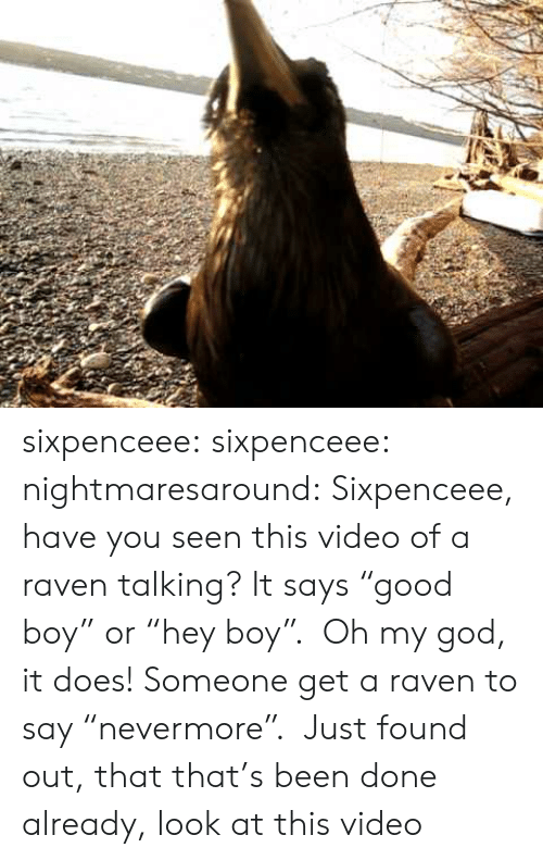 "have you seen this: sixpenceee: sixpenceee:  nightmaresaround:  Sixpenceee, have you seen this video of a raven talking? It says ""good boy"" or ""hey boy"".   Oh my god, it does! Someone get a raven to say ""nevermore"".   Just found out, that that's been done already, look at this video"