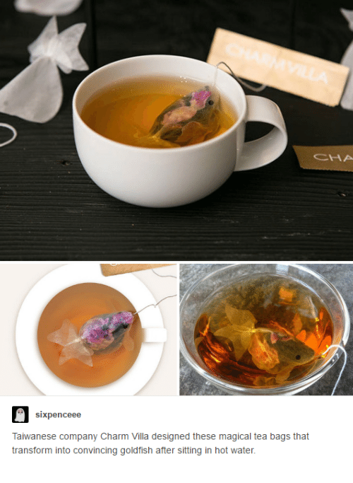 tea bagging: sixpenceee  Taiwanese company Charm Villa designed these magical tea bags that  transform into convincing goldfish after sitting in hot water.