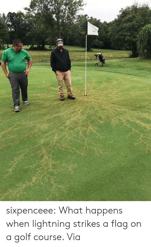 Golf Course: sixpenceee:  What happens when lightning strikes a flag on a golf course. Via