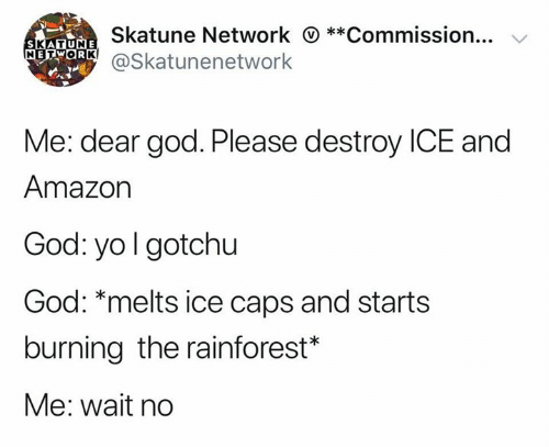Amazon, God, and Yo: Skatune Network **Commission...  SKATUNE  METOR@Skatunenetwork  Me: dear god. Please destroy ICE and  Amazon  God: yo I gotchu  God: *melts ice caps and starts  burning the rainforest*  Me: wait no