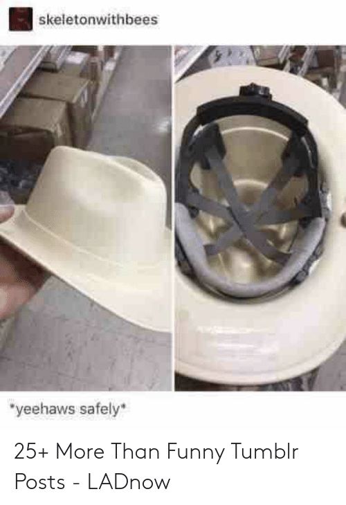 """Funny, Tumblr, and More: skeletonwithbees  """"yeehaws safely 25+ More Than Funny Tumblr Posts - LADnow"""