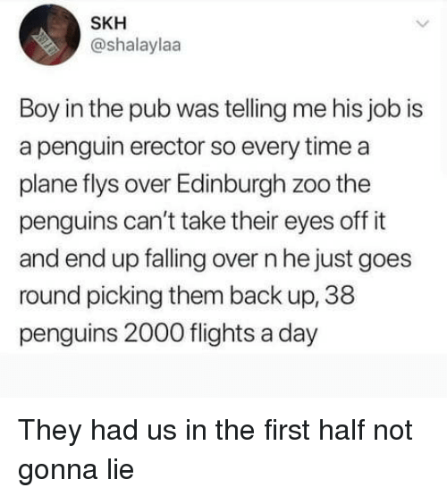 Pub: SKH  @shalaylaa  Boy in the pub was telling me his job is  a penguin erector so every time a  plane flys over Edinburgh zoo the  penguins can't take their eyes off it  and end up falling over n he just goes  round picking them back up, 38  penguins 2000 flights a day They had us in the first half not gonna lie