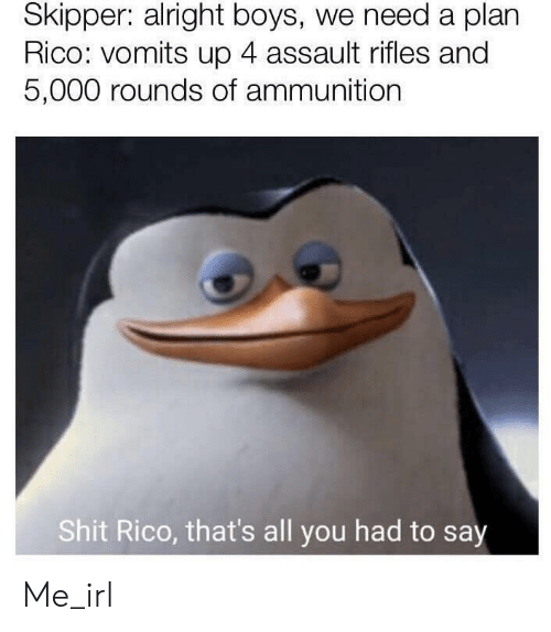 rico: Skipper: alright boys, we need a plan  Rico: vomits up 4 assault rifles and  5,000 rounds of ammunition  Shit Rico, that's all you had to say Me_irl