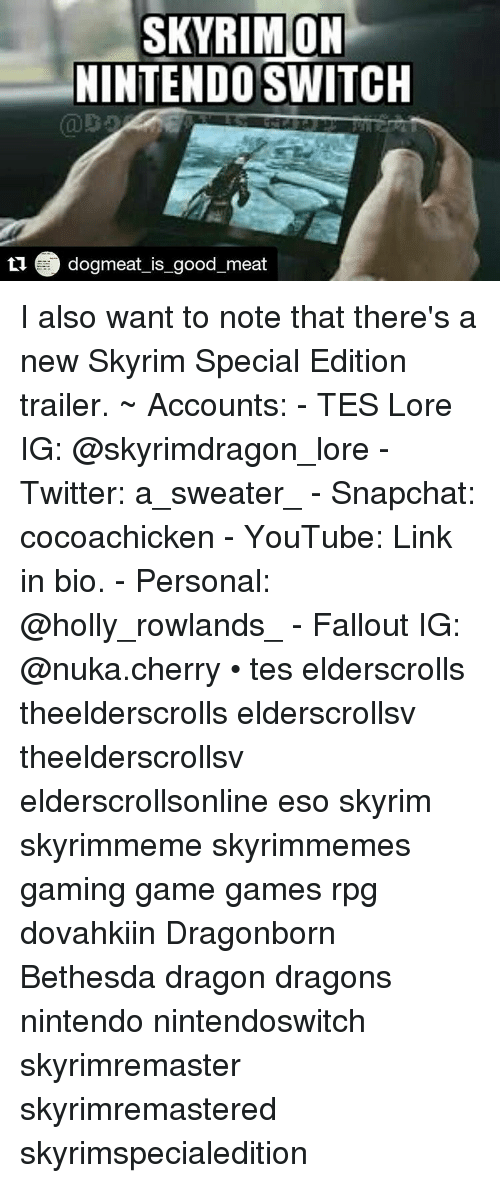 SKYRIMON NINTENDO SWITCH Dogmeat Is Good Meat I Also Want to