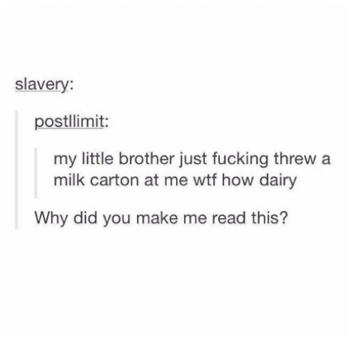 Threws: slavery:  postllimit:  my little brother just fucking threw a  milk carton at me wtf how dairy  Why did you make me read this?