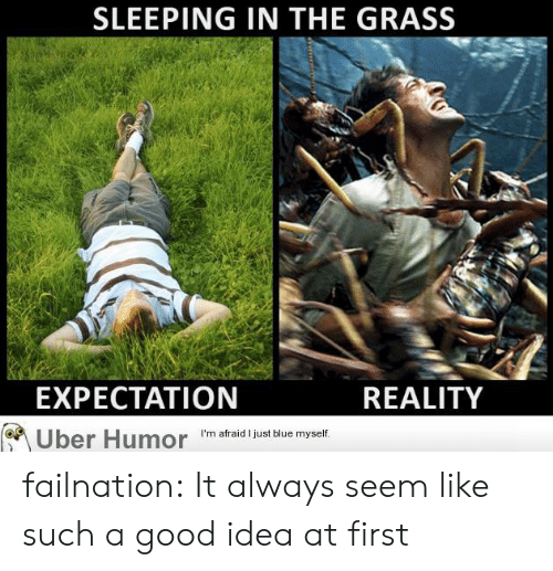 Tumblr, Uber, and Blog: SLEEPING IN THE GRASS  EXPECTATION  REALITY  I'm afraid I just blue myself  Uber Humor failnation:  It always seem like such a good idea at first