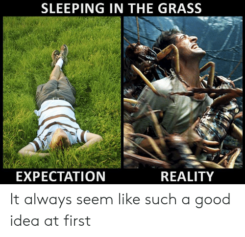 Good, Sleeping, and Reality: SLEEPING IN THE GRASS  EXPECTATION  REALITY It always seem like such a good idea at first