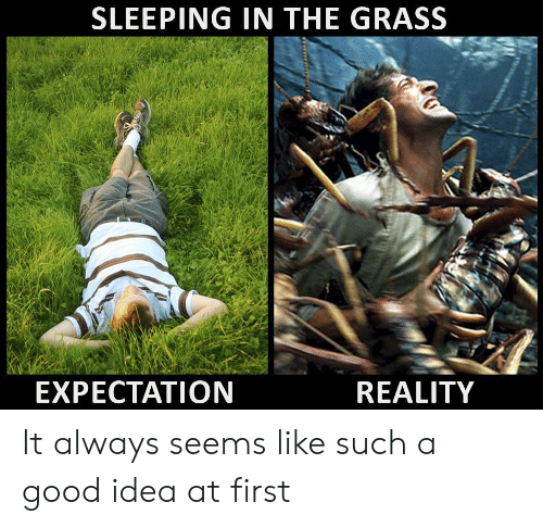 Good, Sleeping, and Reality: SLEEPING IN THE GRASS  EXPECTATION  REALITY It always seems like such a good idea at first