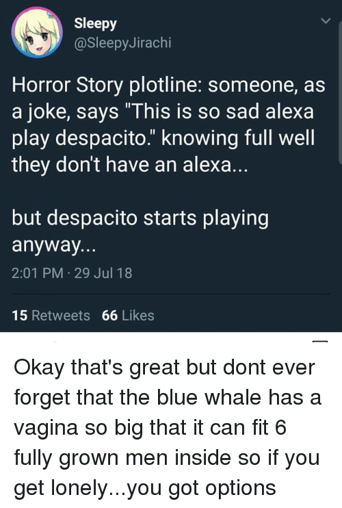 "blue whale: Sleepy  @SleepyJirachi  Horror Story plotline: someone, as  a joke, says ""This is so sad alexa  play despacito."" knowing full well  they don't have an alexa  but despacito starts playing  anyway  2:01 PM 29 Jul 18  15 Retweets 66 Likes Okay that's great but dont ever forget that the blue whale has a vagina so big that it can fit 6 fully grown men inside so if you get lonely...you got options"