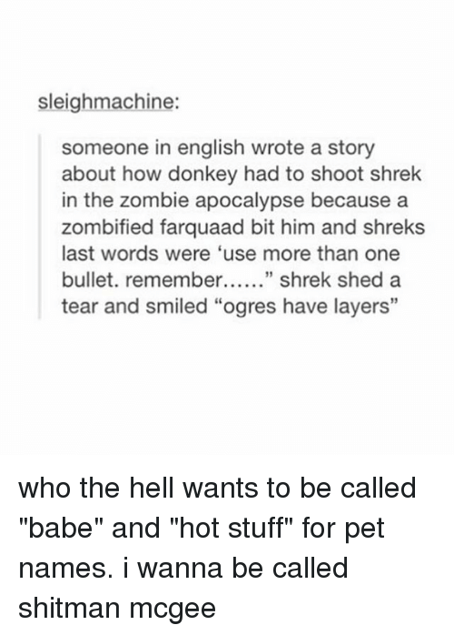 "pet names: sleighmachine:  someone in english wrote a story  about how donkey had to shoot shrek  in the zombie apocalypse because a  zombified farquaad bit him and shreks  last words were 'use more than one  bullet. remember shrek shed a  tear and smiled ""ogres have layers"" who the hell wants to be called ""babe"" and ""hot stuff"" for pet names. i wanna be called shitman mcgee"