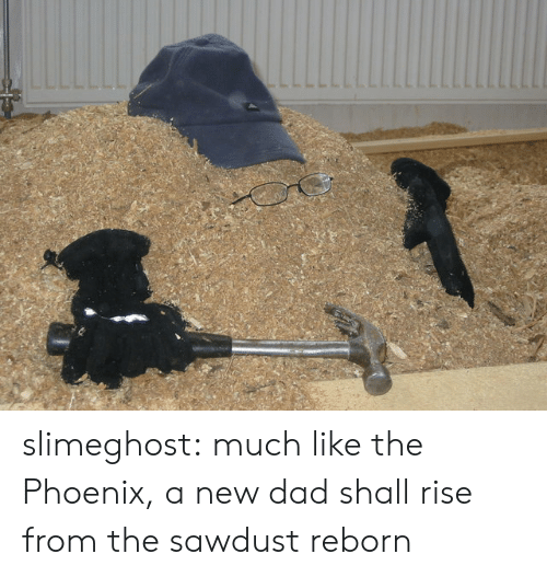 reborn: slimeghost: much like the Phoenix, a new dad shall rise from the sawdust reborn