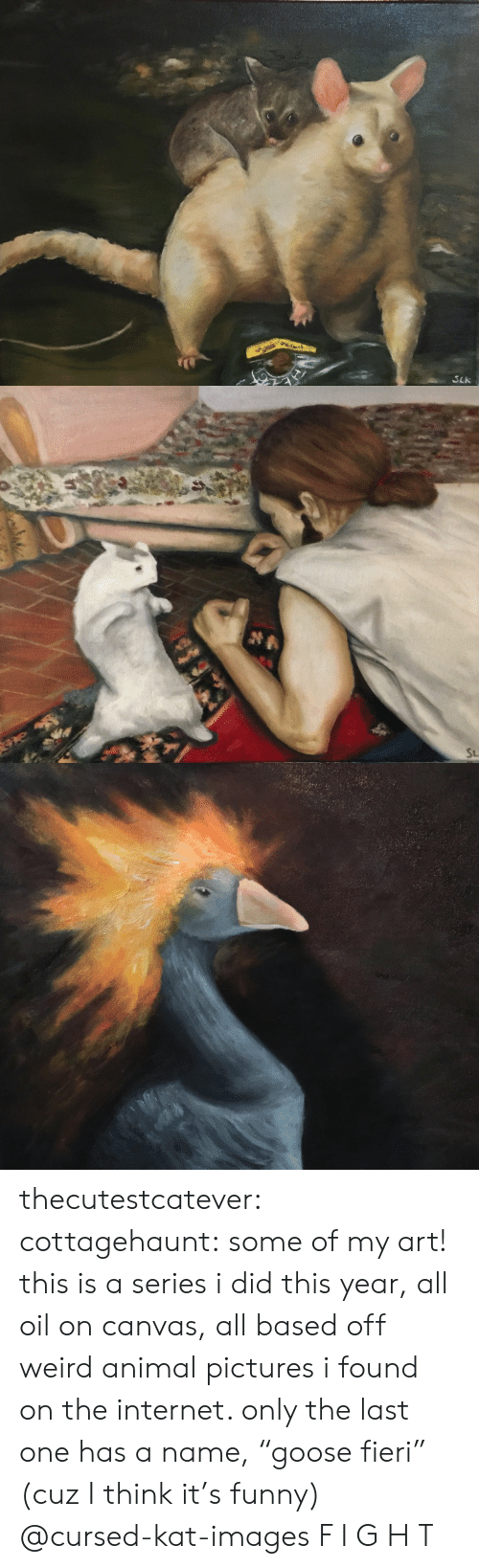 """Funny, Internet, and Tumblr: SLk   St thecutestcatever:  cottagehaunt:  some of my art! this is a series i did this year, all oil on canvas, all based off weird animal pictures i found on the internet. only the last one has a name,""""goose fieri"""" (cuz I think it's funny)  @cursed-kat-images   F I G H T"""