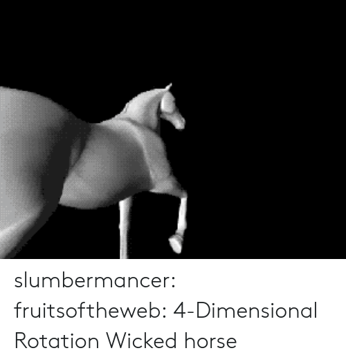 Wicked: slumbermancer:  fruitsoftheweb: 4-Dimensional Rotation Wicked horse