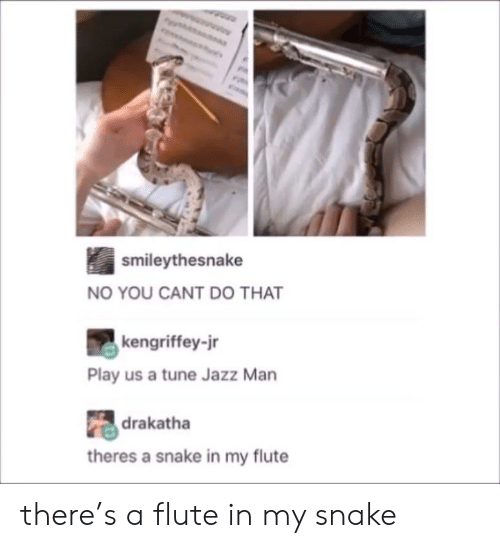 You Cant Do That: smileythesnake  NO YOU CANT DO THAT  kengriffey-jr  Play us a tune Jazz Man  drakatha  theres a snake in my flute there's a flute in my snake