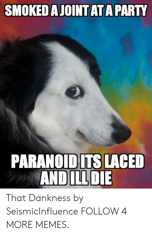 Laced: SMOKED A JOINTATAPARTY  PARANOIDITS LACED  AND ILLDIE That Dankness by SeismicInfluence FOLLOW 4 MORE MEMES.