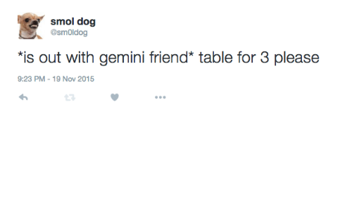 Gemini, Dog, and Table: smol dog  @smOldog  is out with gemini friend* table for 3 please  9:23 PM-19 Nov 2015