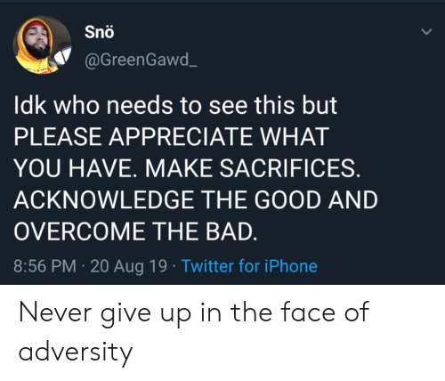 never give up: Snö  @GreenGawd  Idk who needs to see this but  PLEASE APPRECIATE WHAT  YOU HAVE. MAKE SACRIFICES.  ACKNOWLEDGE THE GOOD AND  OVERCOME THE BAD.  8:56 PM 20 Aug 19 Twitter for iPhone Never give up in the face of adversity