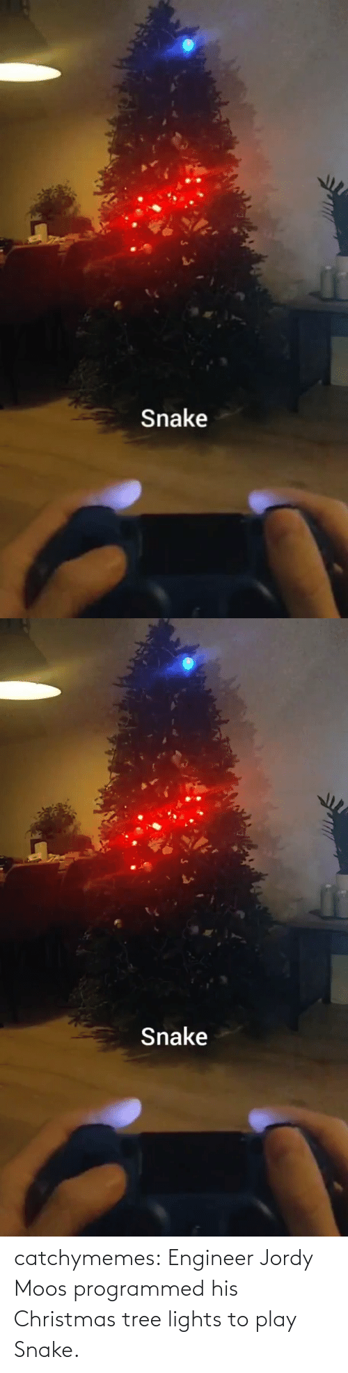 Twitter Com: Snake   Snake catchymemes:  Engineer Jordy Moos programmed his Christmas tree lights to play Snake.