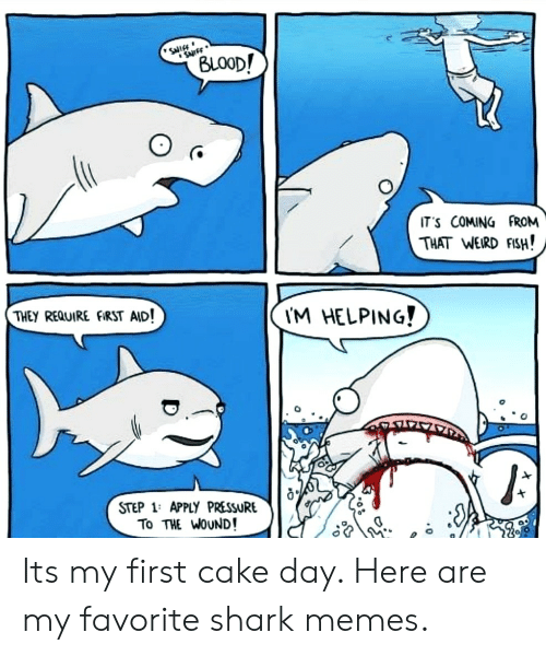 Memes, Pressure, and Weird: SNIEE  SurFF  (BLOOD!  IT'S COMING FROM  THAT WEIRD FISH!  THEY REQUIRE FIRST AID!  I'M HELPING!  STEP 1: APPLY PRESSURE  To THE WOUND! Its my first cake day. Here are my favorite shark memes.