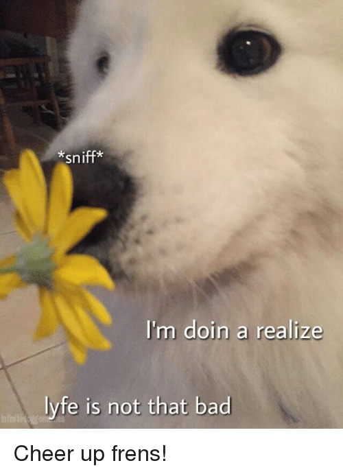 Bad, Dank, and Cheerfulness: *sniff*  I'm doin a realize  lyfe is not that bad Cheer up frens!